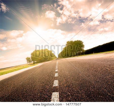 Asphalt Road In Green Sunset Meadow