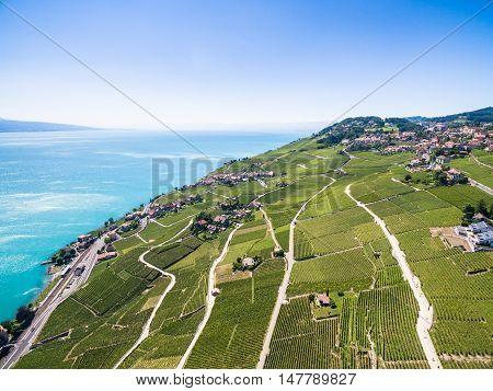 Aerial View Of Vineyards In Lavaux Region - Terrasses De Lavaux Terraces, Switzerland