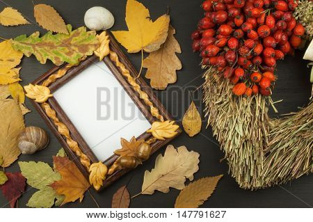Autumn leaves over wooden background with copy space. Remembering November. Decoration of dry leaves of trees. Colors of Autumn.