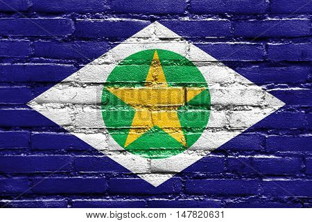 Flag Of Mato Grosso State, Brazil, Painted On Brick Wall