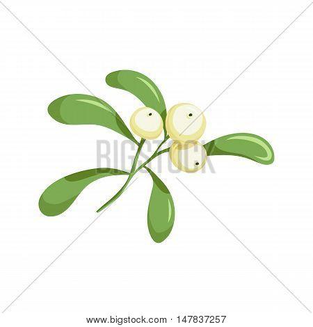 Christmas mistletoe. Christmas holiday object. Christmas mistletoe vector illustration. Cartoon mistletoe with white berries