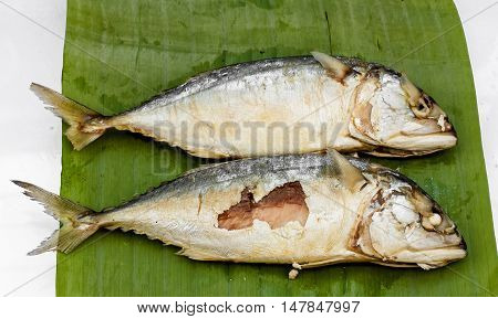 The Mackerel with green banana leaf, food