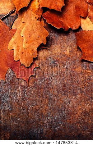 Red and Orange Autumn Leaves Background. Yellow Fallen autumn leaves on vintage wooden old backdrop