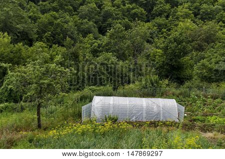 Agricultural greenhouse part of  farmyard, Giginski monastery, Breznik,  Pernik region, Bulgaria