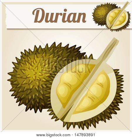 Durian fruit. Cartoon vector icon. Series of food and drink and ingredients for cooking.