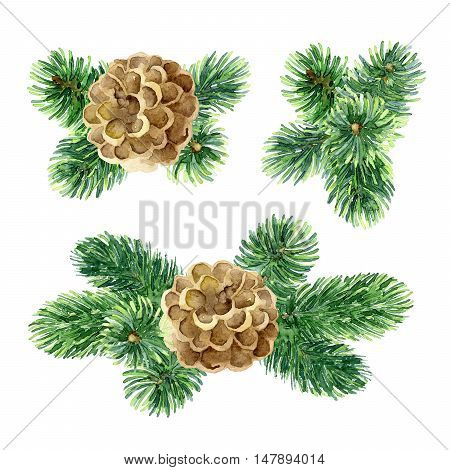 Christmas set of design elements with fir branches and cones. Watercolor illustration