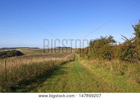 Minster Way Bridleway
