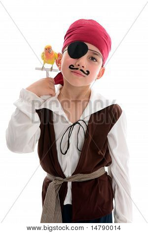 Pirate With Pet Bird