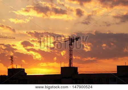 Evening city decline against construction a cranes