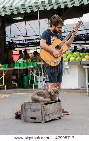 Montreal, Canada - July 26, 2014: Young man on a street at fresh produce market playing guitar with cat.