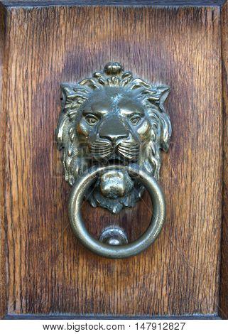photo of wooden door with lion head.