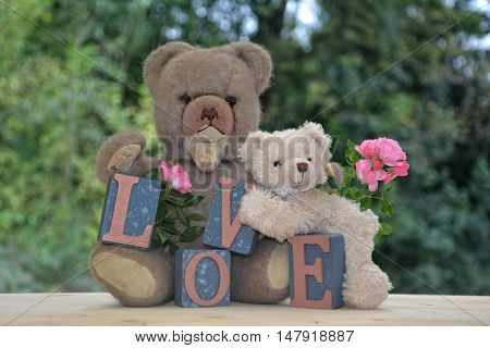 Antique brown teddy bear and a withe sitting with Love stones against green nature background and pink roses