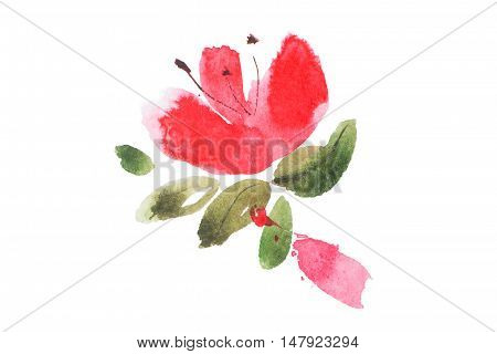 watercolor painting of red flowers bouquet aquarelle drawing.