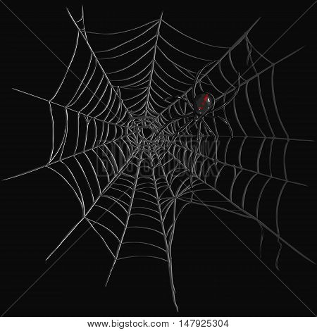 Vector Black Widow Spider On Spider's Web