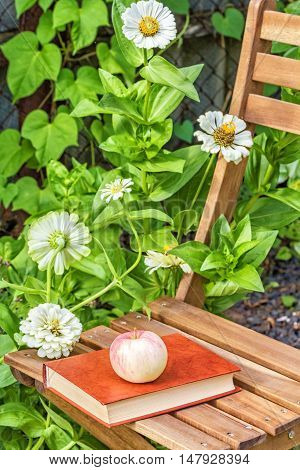 Apple and book on a garden chair among the flowering white zinnias in the garden on a summer day close-up. Selective focus