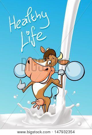 funny fitness cow lift weights standing in milk splash cartoon - design vector illustration