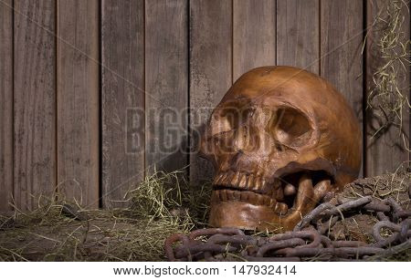 Scary human skull on an old wood background