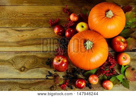 Autumn background with seasonal vegetables and fruits. Thanksgiving greeting card with pumpkins berries and apples.