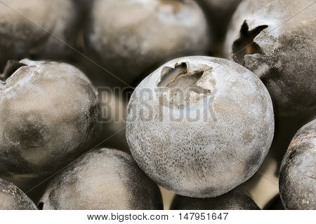 close-up of fresh cool blueberries fruit background