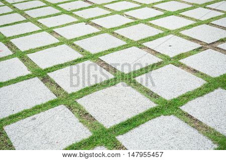 square concrete tile pavement in the garden at home