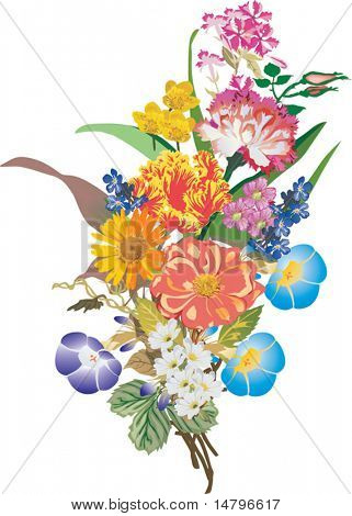 illustration with bunch of different flowers isolated on white background