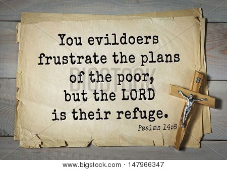 TOP-1000.  Bible verses from Psalms. You evildoers frustrate the plans of the poor, but the LORD is their refuge.