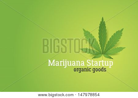 Marijuana startup conceptual vector illustration. Realistic cannabis leaf on green background.