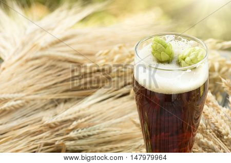 large glass dark beer kvass malt hops barley ears standing on an old wooden table dyeing natural background