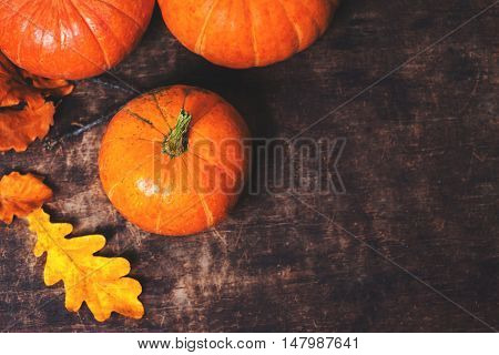 Happy Thanksgiving background with pumpkins and autumn leaves with copy space. Autumn nature concept. Fall pumpkins