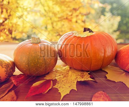harvest, season and autumn concept - close up of pumpkins in wicker basket with leaves on wooden table over natural background
