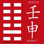 Symbol of i ching hexagram from chinese hieroglyphs. Translation of 12 zodiac feng shui signs hieroglyphs- water and monkey. poster