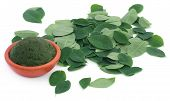 Edible moringa leaves with ground paste in a pottery poster