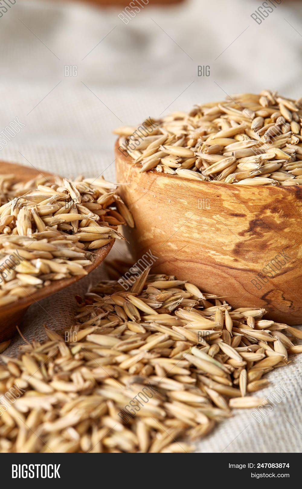 Oat Groats Oat Spike Image & Photo (Free Trial) | Bigstock
