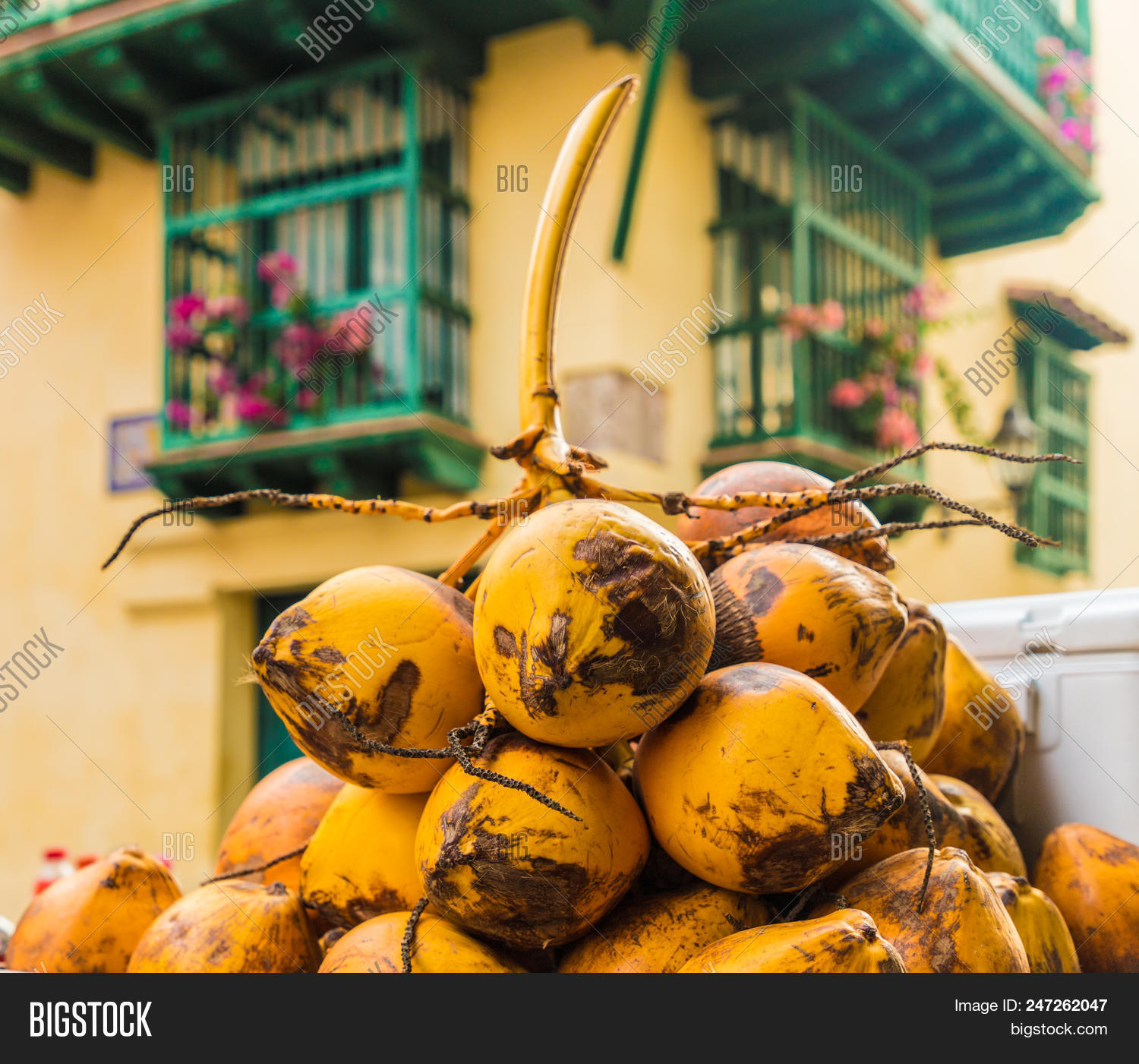 Cartagena Colombia Image Photo Free Trial Bigstock