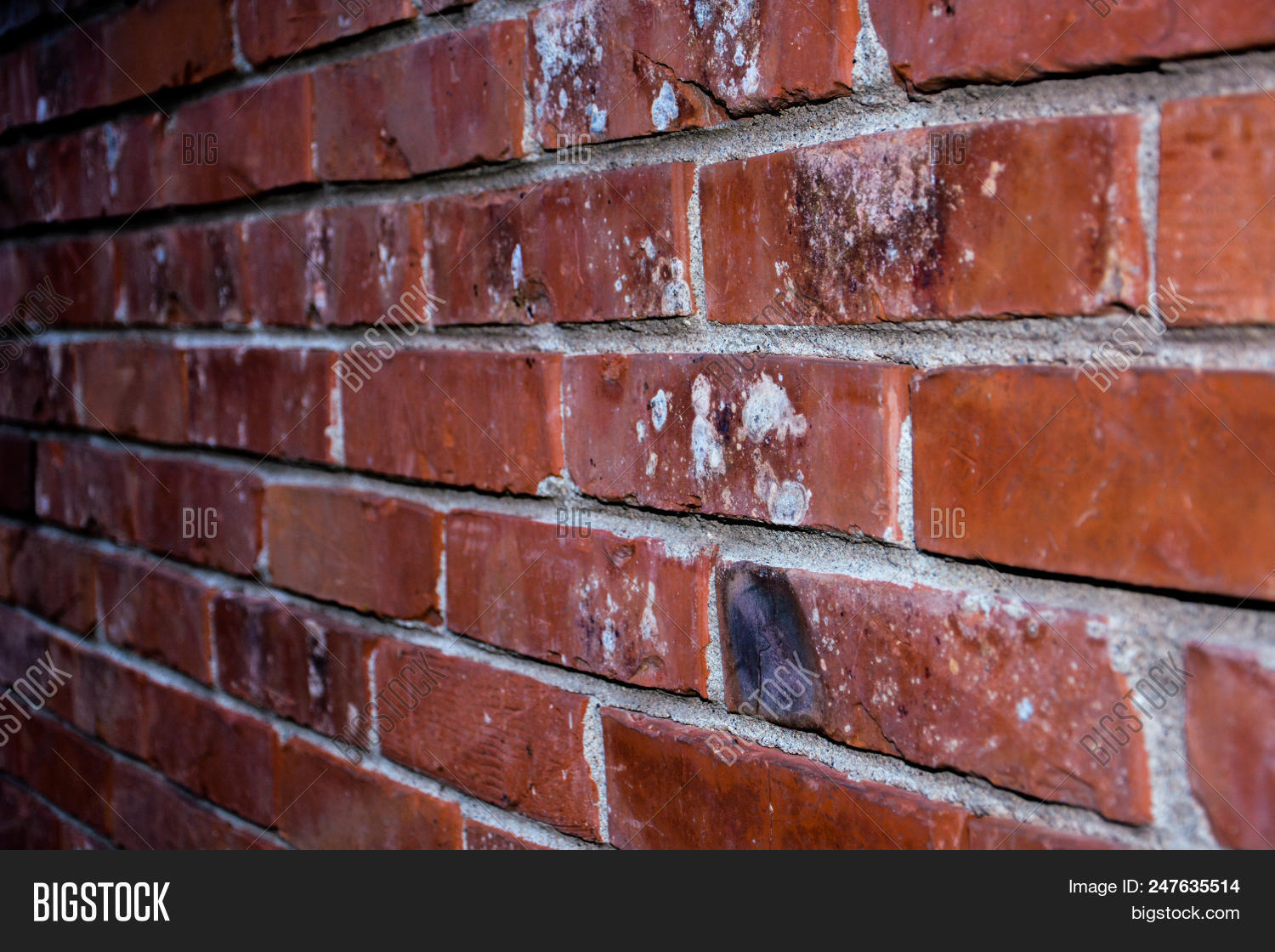 Brick Wall Red Color Image Photo Free Trial Bigstock