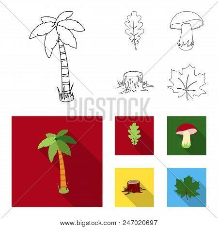 Oak Leaf, Mushroom, Stump, Maple Leaf.forest Set Collection Icons In Outline, Flat Style Vector Symb