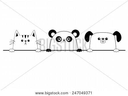 Cat Dog Panda Bear Vector Photo Free Trial Bigstock