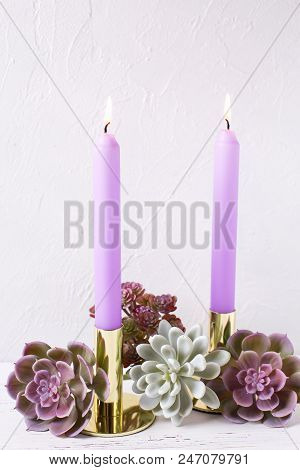 Violet Color Burning Candles  And Succulents Echeveria On White Textured Background.selective Focus.