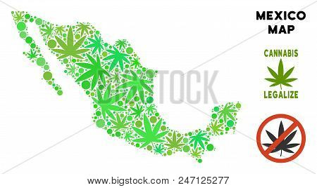 Royalty Free Marijuana Mexico Map Mosaic Of Weed Leaves. Template For Narcotic Addiction Campaign Ag