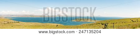 A Panoramic View Of The Sterkfontein Dam In The Free State Province