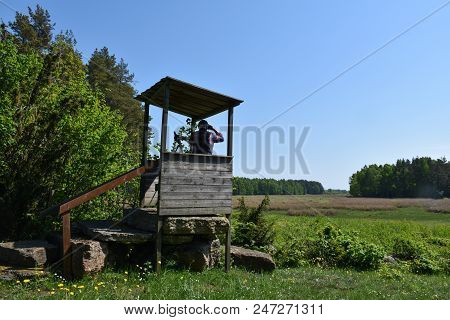 Ornithologist In A Birdwatching Tower By A Marshland At The Swedish Island Oland