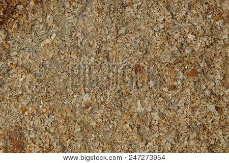 Brown Texture Of Small And Small Wood Sawdust