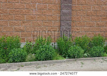 Green Grass And Ornamental Vegetation Near The Road Near The Brown Brick Wall