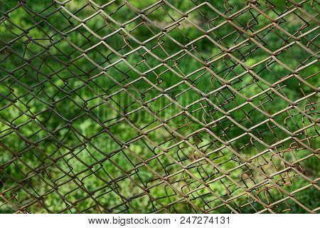 Iron Texture From A Gray Rusty Mesh From A Fence On A Green Background