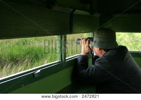 Man Birdwatching