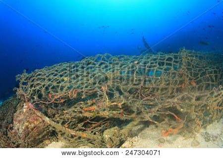 Ghost net. Discarded fishing net pollutes reef