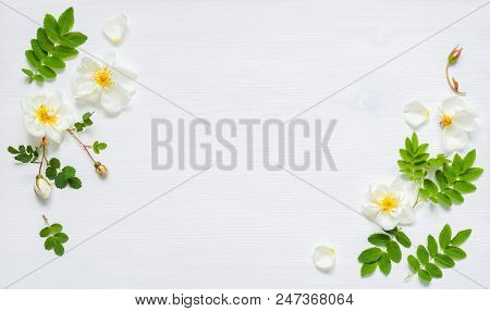 Summer Flower Background - Composition Made Of White Rose Flowers. Flat Lay, Top View, Space For Tex
