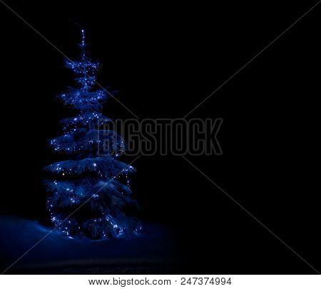 Snow-covered Fir In The Winter Forest Illuminated By New Year's Lights