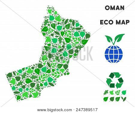 Ecology Oman Map Collage Of Herbal Leaves In Green Color Tints. Ecological Environment Vector Concep