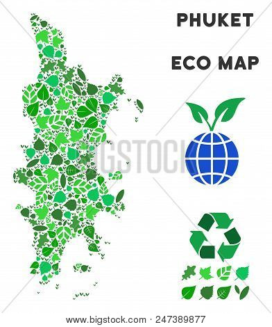 Ecology Phuket Map Composition Of Herbal Leaves In Green Color Variations. Ecological Environment Ve